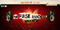 THE PULSE RADIO