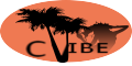 CARIBBEAN VIBE AUDIO STATION
